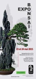 Affiche de l'exposition Groupe bonsaï Québec 2015.