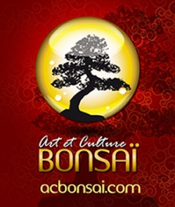 ART ET CULTURE BONSAÏ