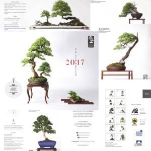 bonsai-compilation