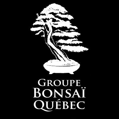 Bonsai - Logo